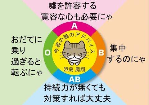 2889FAB4-AF63-4A12-8194-53F16ECC55EE.jpeg