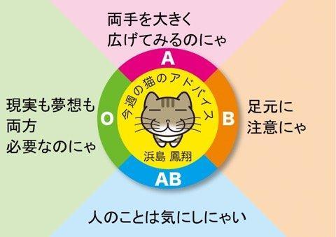 A4E5D852-941A-4030-8BE5-4B1B6AD614A9.jpeg