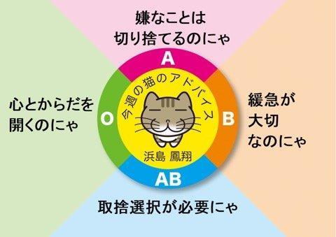 C4FCC3AF-B733-4FBE-B48F-A6B46DACE0B6.jpeg