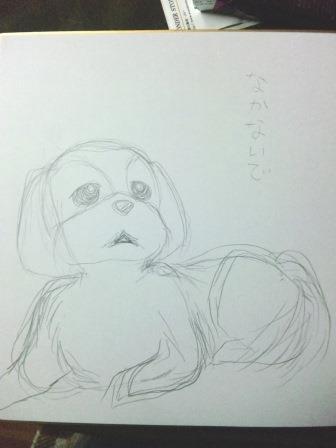 goroku12.jpg