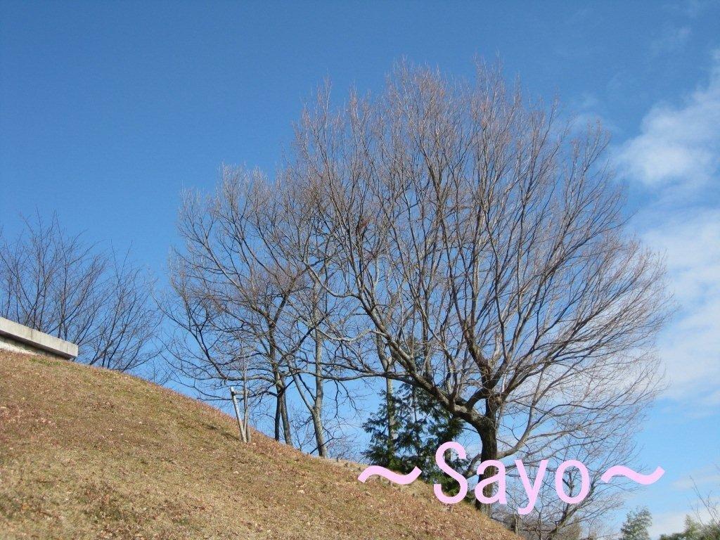 IMG_4959-200.jpg